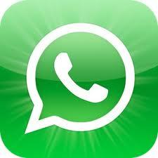 push to talk whatsapp